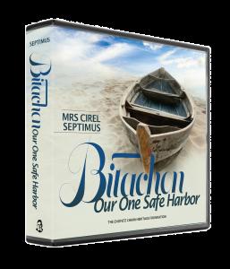 Bitachon our One Safe Harbor