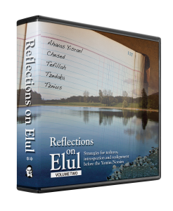Reflections on Elul vol. 2
