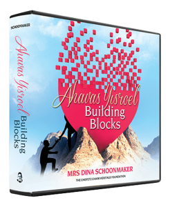 Ahavas Yisroel Building Blocks